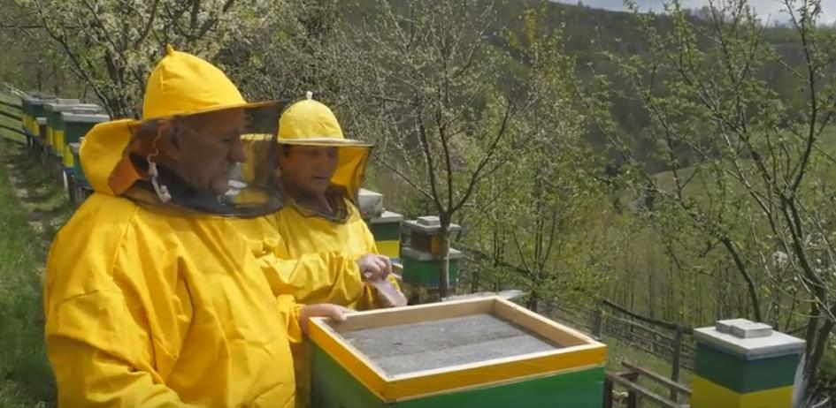 Pčele su naša druga penzija
