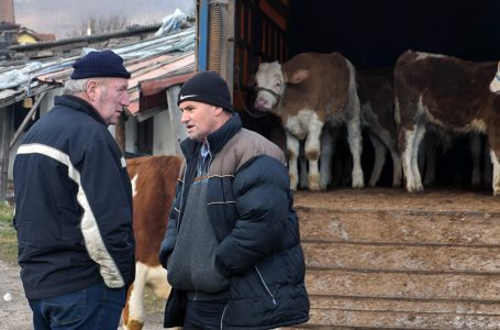 Trgovina na stočnoj pijaci u Turbetu počinje u 4 sata ujutro