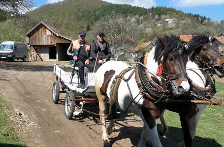 Bez konja nema života