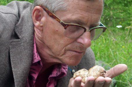 Bosanac Meho savršenim nosom otkriva tartufe pod zemljom