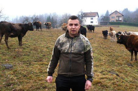 Umjesto novoga automobila Golf 7, Boris Tanasić kupio dvadeset krava i junica